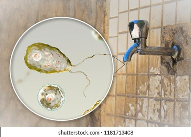 Brain-eating amoeba awareness concept. 3D illustration showing potential way of aquiring infection during ritual nasal rinsing. Parasites Naegleria fowleri can be present in dirty tap water
