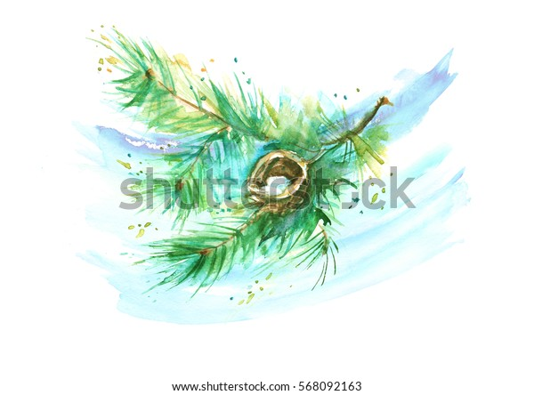 A branch of spruce, pine, jack and bird eggs. On isolated background. Drawing done with watercolor. In vintage style. Use for decoration, design, poster, postcard and more