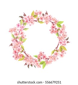 Branches of apple blossom or cherry flowers (sakura). Floral wreath. Watercolor round border