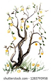 branches of apple tree with apples in autumn,