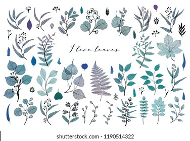 Branches and leaves, fall, spring, summer. Vintage botanical illustration,  floral elements in blue color poster design