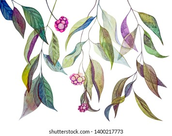 Branches with leaves on a white background. Gold, green, pink. Plants with intertwined stems. Elements for design. Watercolor Botanical illustration