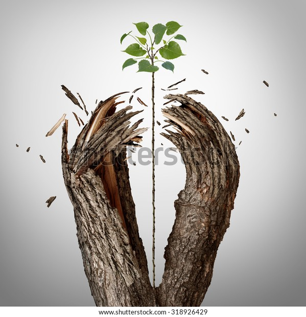 Breaking through concept as a green sapling growing upward and destroying a tree barrier as a business success metaphor for potential ambition and strong will to succeed.
