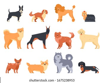 Breeds of dogs. Doberman dog, alaskan malamute, cute bulldog and akita. Group of purebred pedigree doggy character  isolated illustration icons set. Flat style cartoon animals pack