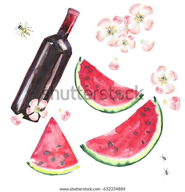 Bright beautiful lovely wonderful cute delicious tasty yummy summer picnic set includes bottle of red wine, slices of watermelon, flowers of apple, bee and ants pattern watercolor hand illustration