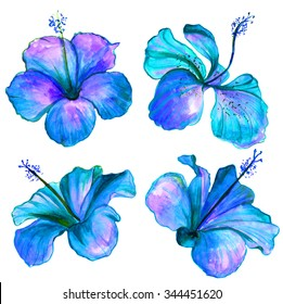 Bright blue watercolor Hibiscus flowers collection