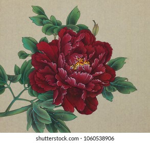 bright burgundy peony with a drop of dew on the leaves