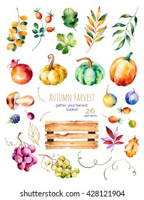 Bright collection with fall leaves,branches,wooden basket,pomegranate,mushroom,pumpkins,grapes vine,prunes and more.Colorful autumn collection with 26 watercolor elements.Gather your harvest basket!