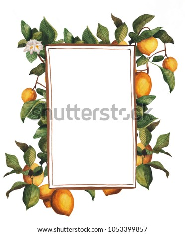 bright frame lemon tree design invitations stock illustration