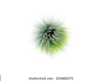 Bright highly detailed fluff of multi-colored fur bumbonchik, abstract 3D render illustration. On a white isolate background.