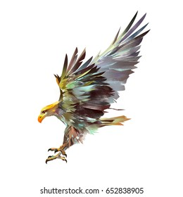 bright isolated illustration of a flying eagle
