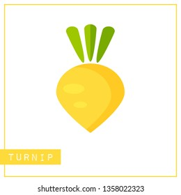 Bright memory training card with colorful vegetable. Flat design isolated yellow color turnip or rutabaga with shine and shade. illustration for healthy diet banner or school vitamin poster.