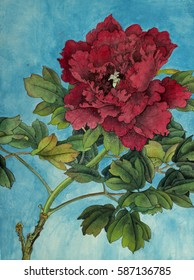 bright red peony painted in Chinese style