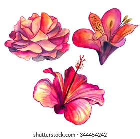 Bright red watercolor Hibiscus, rose and lilac flowers