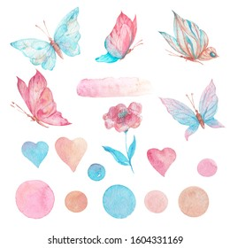 Bright set of flower and butterflies painted with watercolor paints