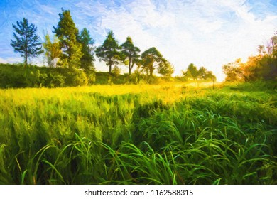 Bright sunrise of the sun on a summer meadow with a big grass. Oil paints, the digital structure of painting