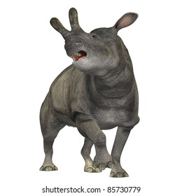 Brontotherium 01 - The Brontotherium was a rhinocerous-like mammal which was a herbivore and is now extinct. It roamed North America in the Early Oligocene and is related to the horse.