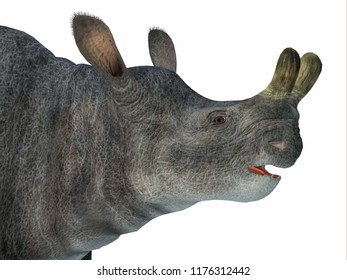 Brontotherium Mammal Head 3D illustration - Brontotherium was a horned herbivorous mammal that lived in North America during the Early Oligocene Period.