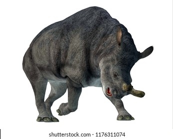 Brontotherium Mammal  on White 3D illustration - Brontotherium was a horned herbivorous mammal that lived in North America during the Early Oligocene Period.