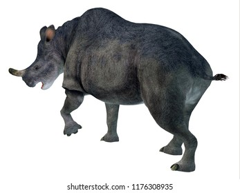 Brontotherium Mammal Tail 3D illustration - Brontotherium was a horned herbivorous mammal that lived in North America during the Early Oligocene Period.