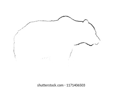 Brown bear contour in white background