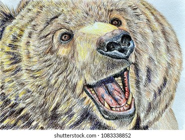 Brown bear the master of taiga. Color pencils on paper. Naive Art. Abstract art. Painting color pencils on paper. Children's creativity