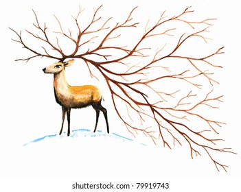 Brown deer with big, beautiful horn.Picture I have created with watercolors.
