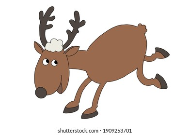 Brown deer picture and white background