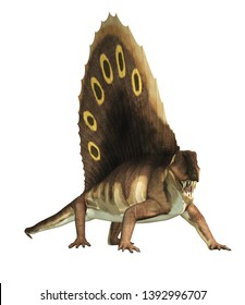 A brown dimetrodon, a prehistoric sail-backed creature that predates the dinosaurs, stands on a white background bearing its sharp teeth. 3D Rendering