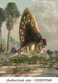 A brown dimetrodon, a prehistoric sail-backed creature that predates the dinosaurs, stands in a permian era wetland bearing its sharp teeth. 3D Rendering