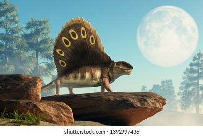 A brown dimetrodon, a prehistoric sail-backed creature that predates the dinosaurs, stands on a rocky cliff bearing its sharp teeth. 3D Rendering