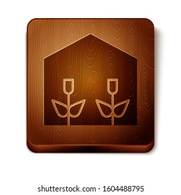 Brown Home greenhouse and plants icon isolated on white background. Wooden square button.