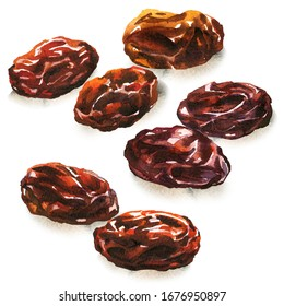 Brown raisins, dried berries of grapes. Vegetarian healthy snack, natural tasty sweets, organic food. Isolated objects, close-up, hand drawn watercolor illustration on white background