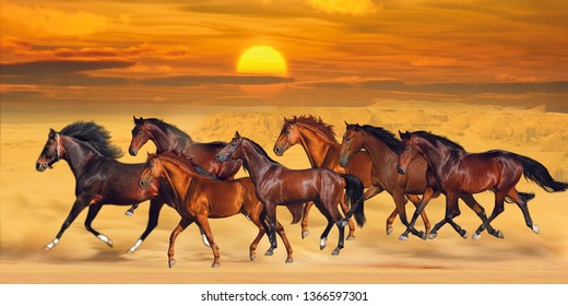 Brown seven running horses on sea cost sunshine natural background 3D wallpaper. Graphical poster modern artwork