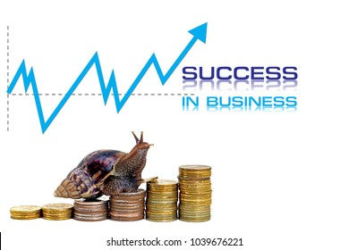 Brown snail climbing the pile of coins on white background , Business and finance ,Victory and success from patience ,Slow economic growth