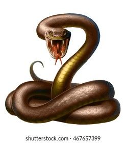 brown snake, with open mouth