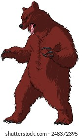 Brown/black/grizzly bear, standing up on his hind legs/paws, striking a threatening pose, his mouth open in a roar.