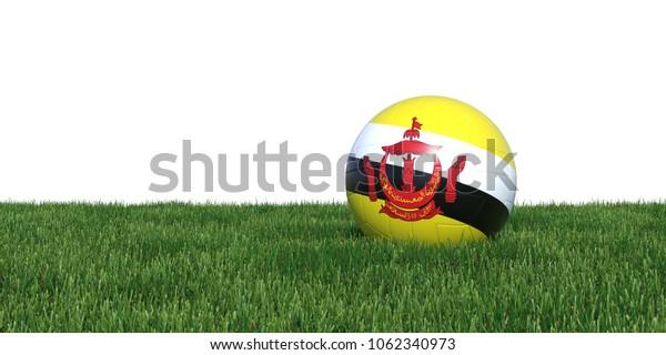 Brunei Bruneian flag soccer ball lying in grass, isolated on white background. 3D Rendering, Illustration.