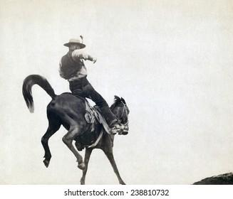 Bucking Bronco. Ned Coy, a famous Dakota cowboy, on a bucking horse. Photograph by John C. Grabill ca. 1888