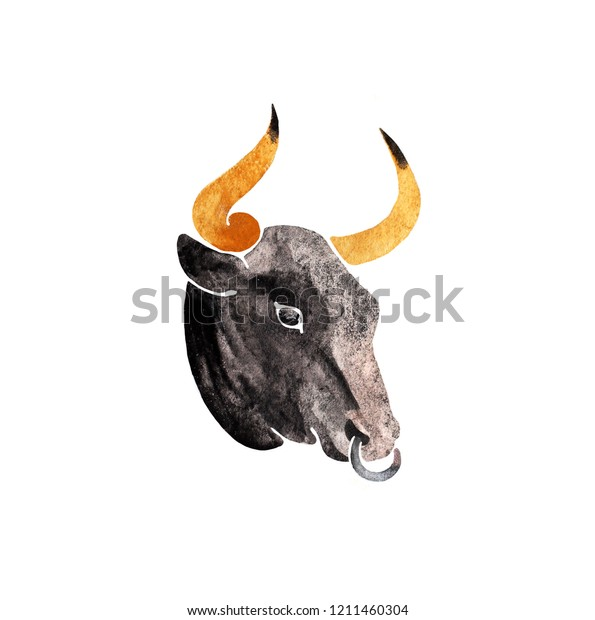 Bull head isolated on a white background. Watercolor hand drawn paper raster texture illustration in cute minimalistic style.