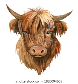 bull on isolated white background, watercolor drawing, symbol of new year
