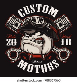 Bulldog biker with crossed pistons. Illustration with motorcycle rider on dark background. Shirt graphics (COLOR VERSION) Easy editable.RASTER VERSION