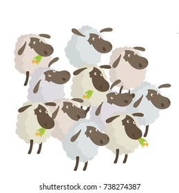A Bunch of Sheep