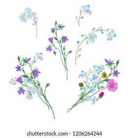 Bundle of Wild Flowers Bouquets Isolated on White Background for Greeting Cards, Wedding invitation, Illustrations, Web, Textile Designs. Cute Bellflowers, Forget me not and Cosmos Flowers Bouquets.