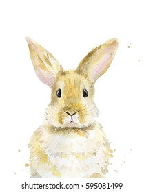 Bunny. Watercolor illustration on white.
