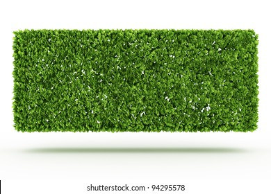 Bush wall  isolated on white