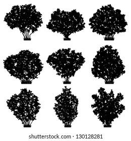 Bushes silhouettes set. Raster version of vector illustration.