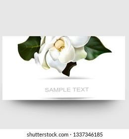 Business card design with white Magnolia and sample text