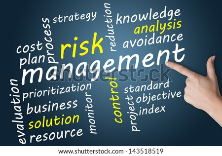 Business concept: Risk management in word tag cloud