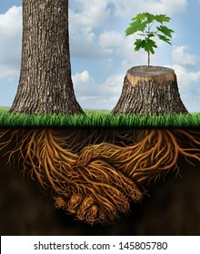 Business help and support concept as a tall tree next to a sick stump with a new growth of hope emerging as teamwork with the roots shaped as a handshake providing the strength for success.